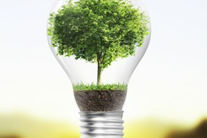 online degree alternative renewable energy management
