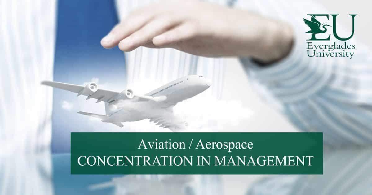 airline dissertation