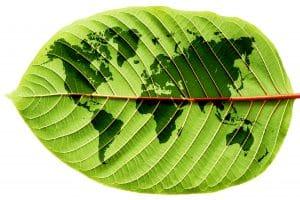 World Map of Sustainabilty