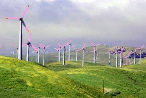 brighter blades for wind turbines killing birds