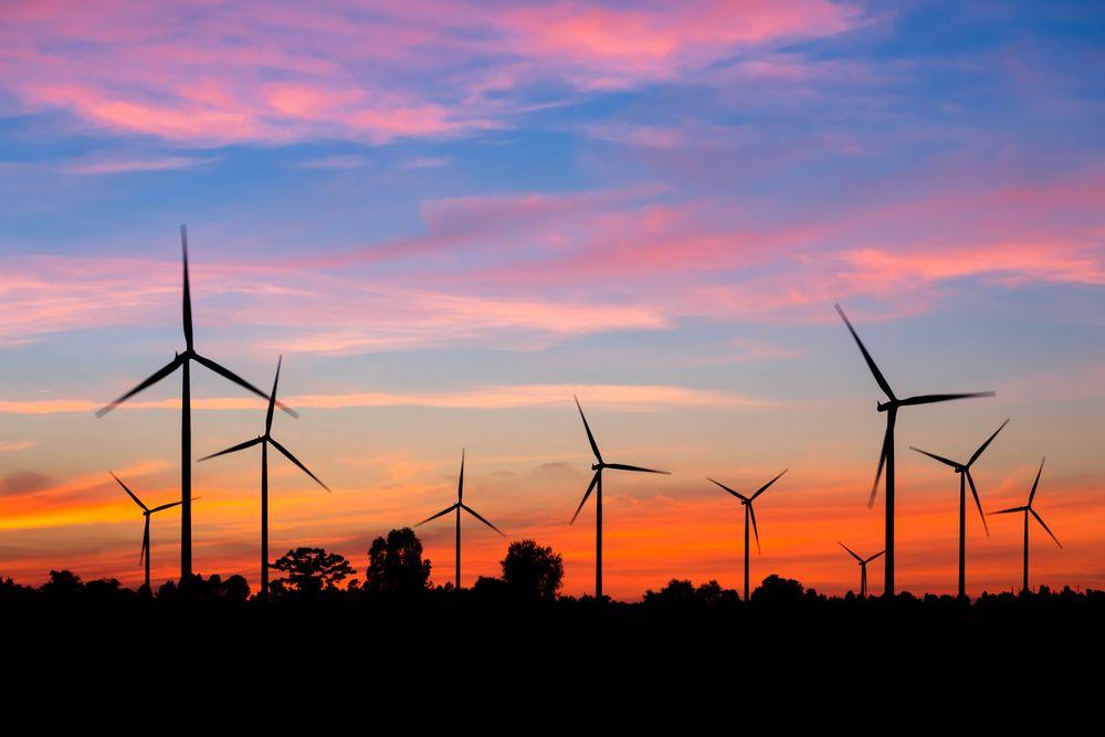 how to stop wind turbines killing birds