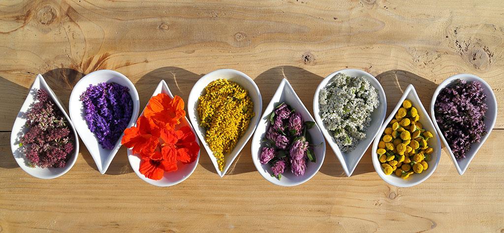 little bowls of herbs