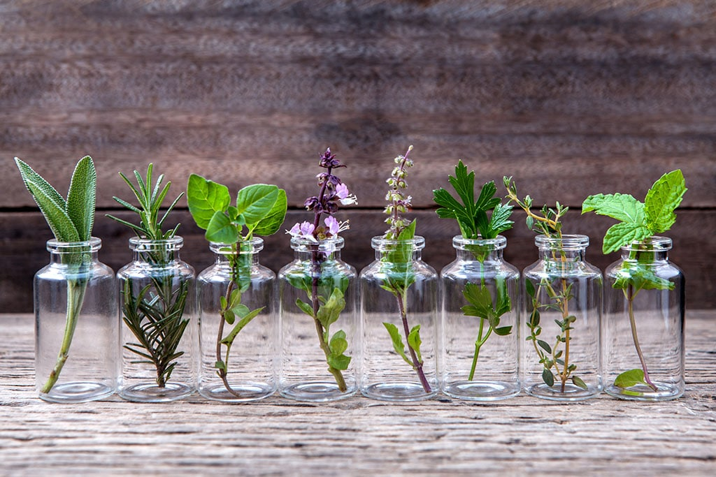 small glass jars of herbs