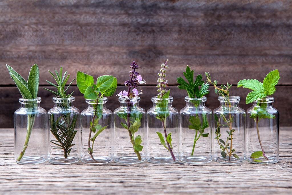 small glass jars of herbs