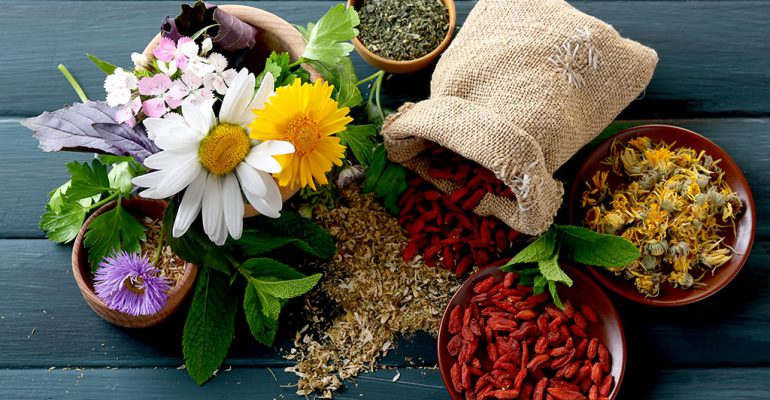 Flowers, plants, herbs, and fruits in bowls on a wooden table alternative medicine schools