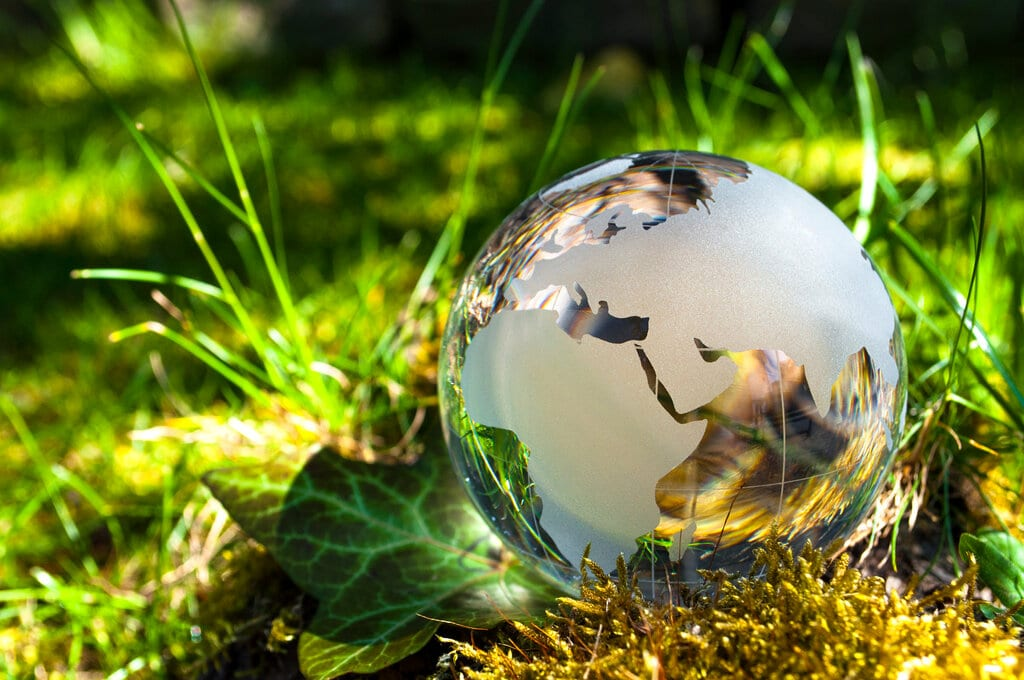 Climate change concept with glass globe set among green backdrop